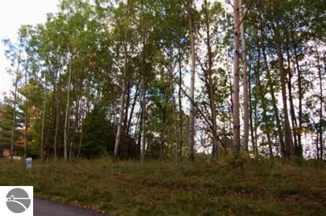 282 Lakeview Trail, Kewadin, MI 49648 (MLS #1810787) :: Brick & Corbett