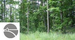 2111 Kodiak Trail, Kingsley, MI 49649 (MLS #1814074) :: CENTURY 21 Northland