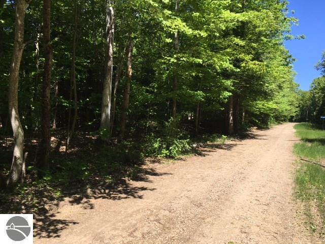 "Lot ""A"" Wildwood Lane, Eastport, MI 49627 (MLS #1828070) :: Team Dakoske 