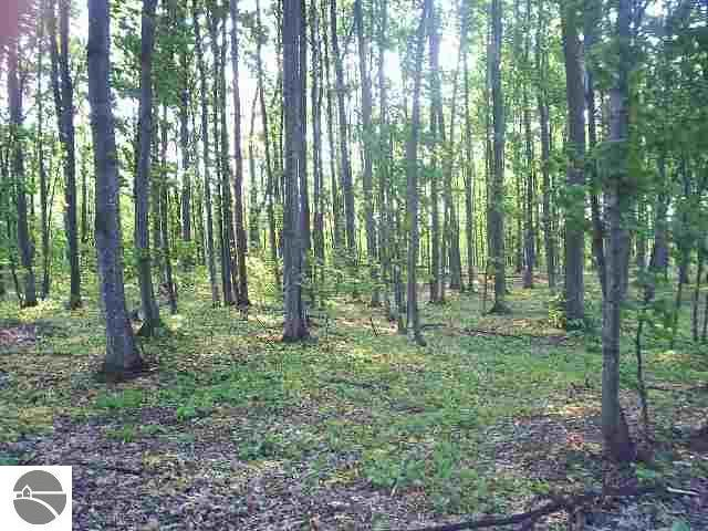 N Our Majestic Trail, Suttons Bay, MI 49682 (MLS #1832829) :: Boerma Realty, LLC
