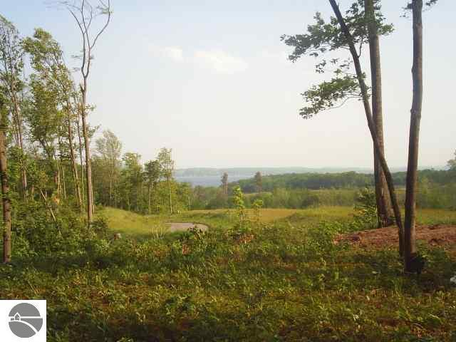 N Our Majestic Trail, Suttons Bay, MI 49682 (MLS #1832830) :: Boerma Realty, LLC