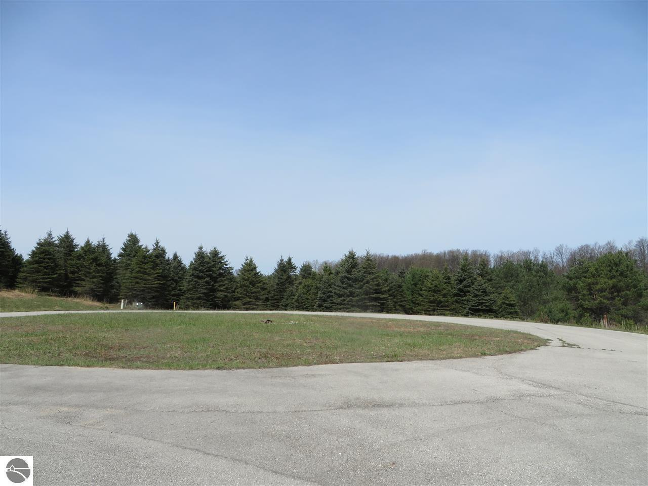 10904 Spruce Hollow Trace - Photo 1