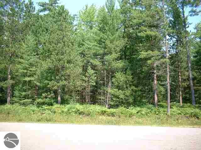 000 Loffman Woods Road, East Tawas, MI 48730 (MLS #1854885) :: Brick & Corbett
