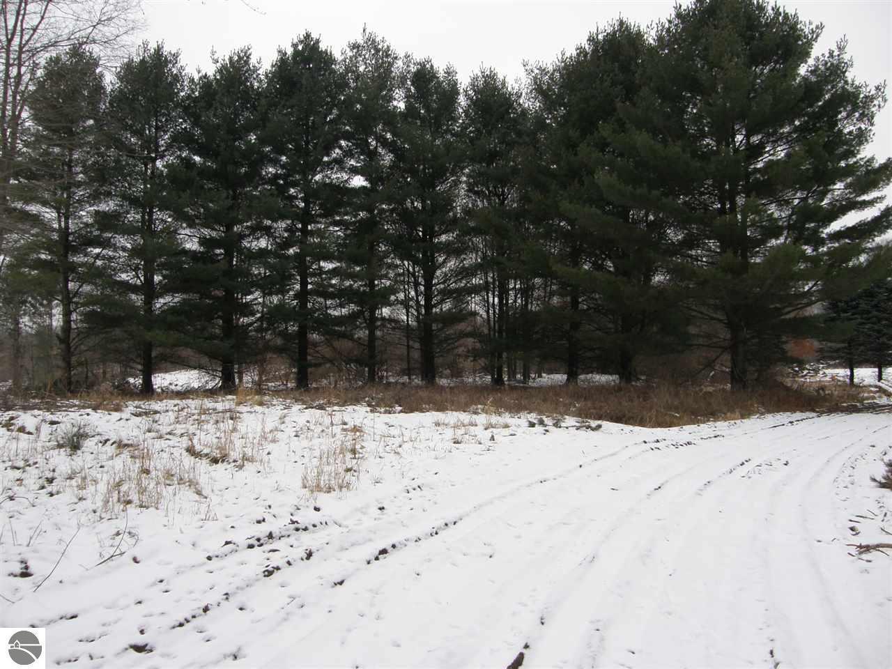 10560 Stevenson Lake Road - Photo 1