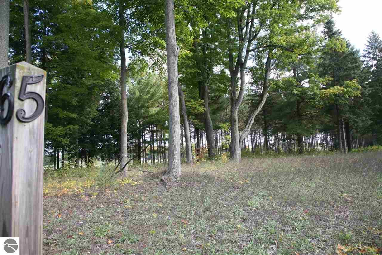 5 lot Scenic Woods Circle - Photo 1