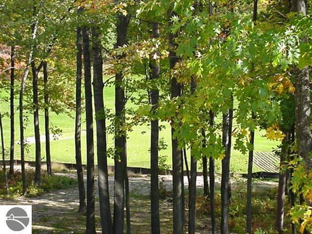 38 Brook Hill Cottages, Glen Arbor, MI 49636 (MLS #1860191) :: Team Dakoske   RE/MAX Bayshore