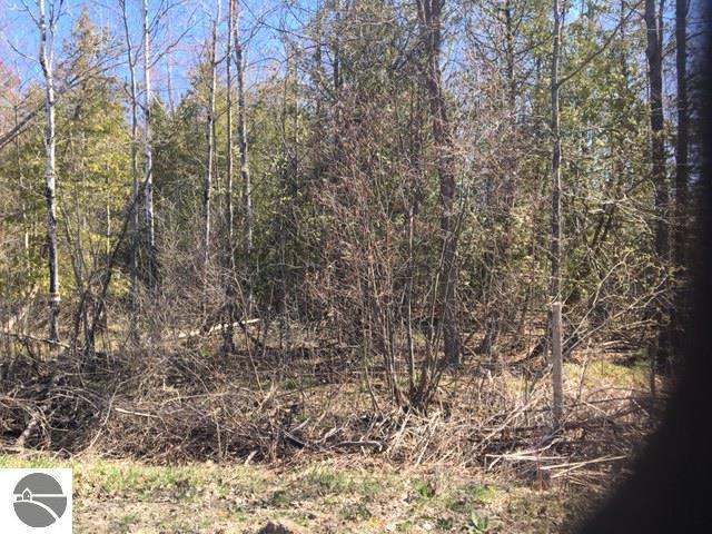 00 Partridge Trail, Elk Rapids, MI 49629 (MLS #1860515) :: Team Dakoske   RE/MAX Bayshore