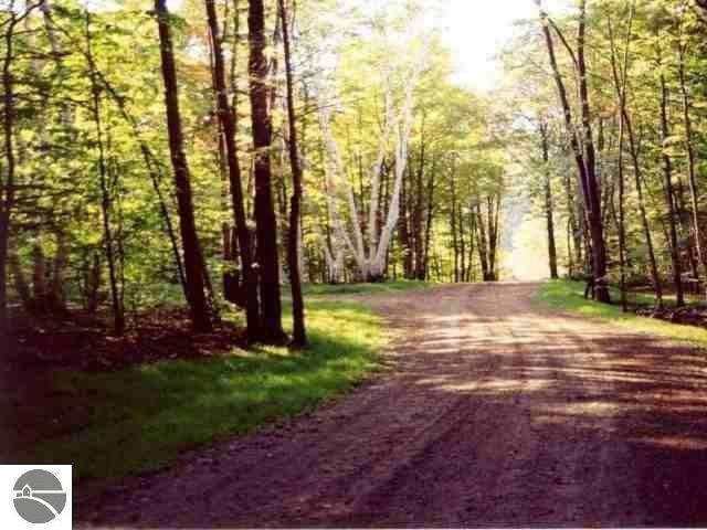 S Micheals Woods Trail, Maple City, MI 49664 (MLS #1865289) :: Boerma Realty, LLC