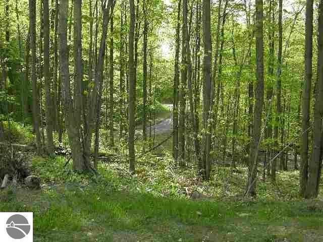 River Valley Road, Traverse City, MI 49686 (MLS #1869318) :: CENTURY 21 Northland