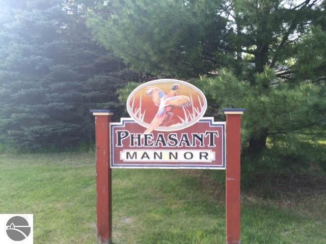00 Ringneck Lane, Buckley, MI 49620 (MLS #1869547) :: Michigan LifeStyle Homes Group