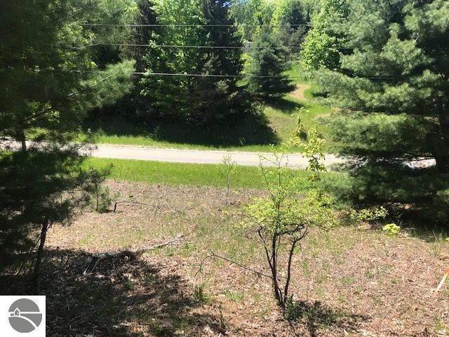 9305 E Grace Drive, Cedar, MI 49621 (MLS #1873610) :: Michigan LifeStyle Homes Group