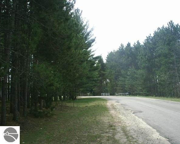 9064 Pine Circle Drive Nw, Rapid City, MI 49676 (MLS #1874282) :: Brick & Corbett