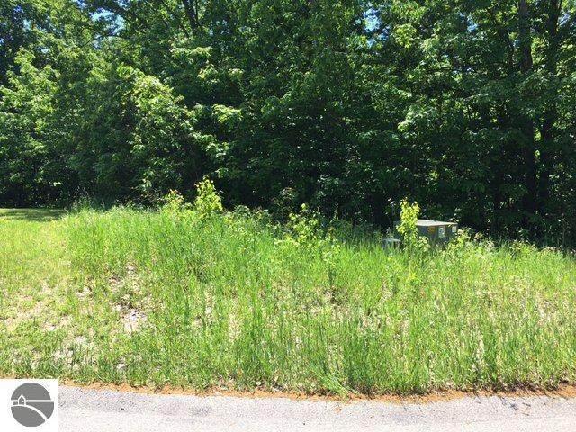 E Oak Ridge Drive, Traverse City, MI 49684 (MLS #1876410) :: CENTURY 21 Northland