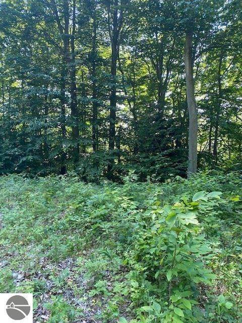 Parcels 5 & 6 Tree Tops Lane, Frankfort, MI 49635 (MLS #1876578) :: Michigan LifeStyle Homes Group
