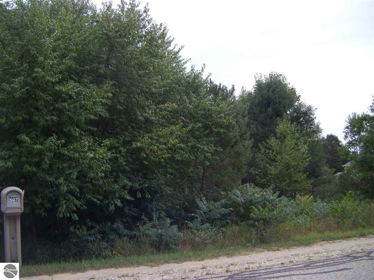 513 Maplebrooke Lane - Photo 1