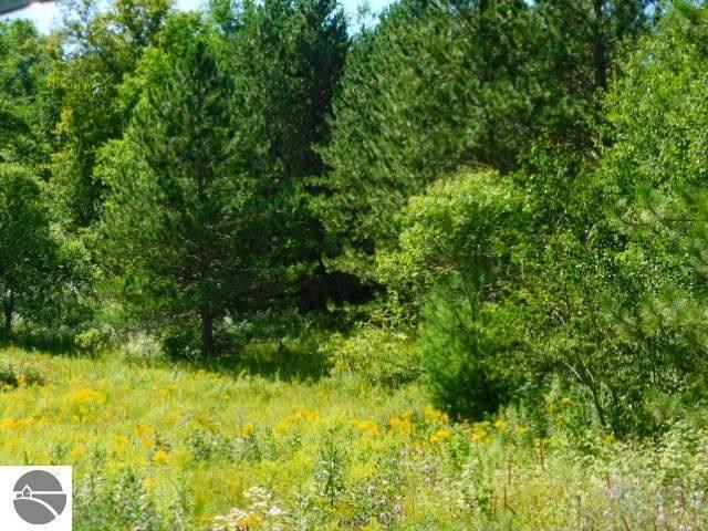 000 Partridge Lane, Mancelona, MI 49659 (MLS #1879294) :: Michigan LifeStyle Homes Group