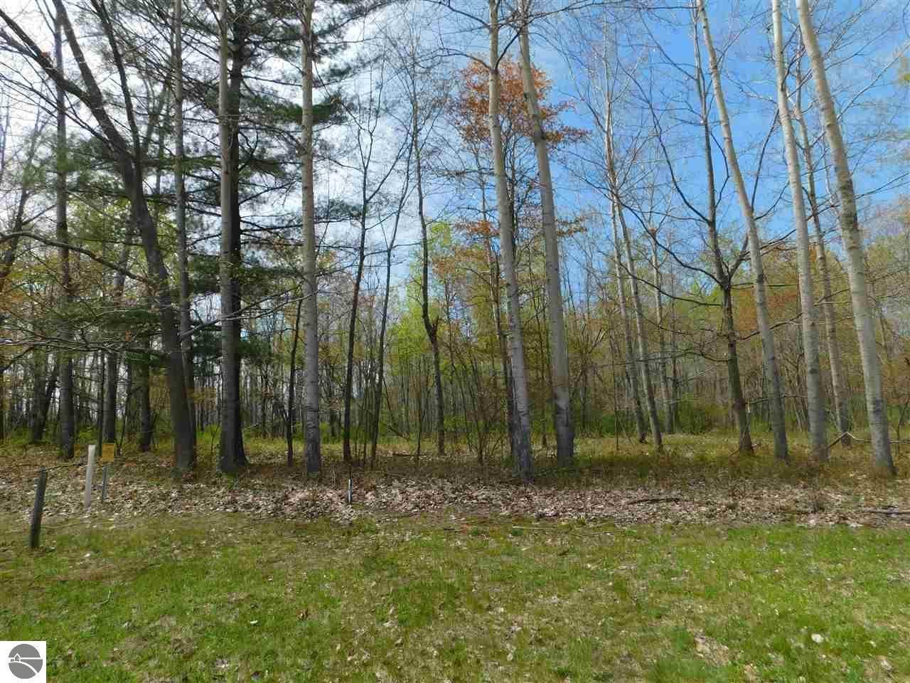 5807 Huron Woods Drive - Photo 1