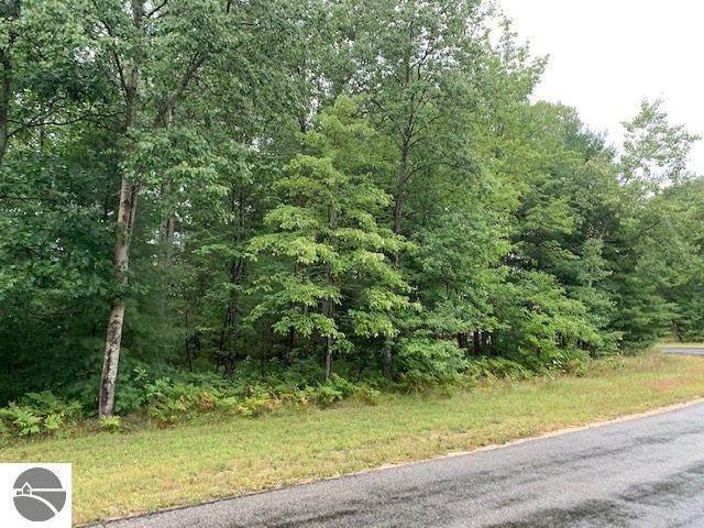 Lot 30 Twin Birch Road, Kalkaska, MI 49646 (MLS #1879762) :: Michigan LifeStyle Homes Group