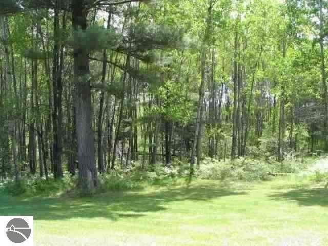 0 White Pine Drive, Cadillac, MI 49601 (MLS #1879957) :: Michigan LifeStyle Homes Group