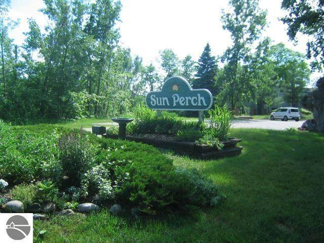 11008 S Blue Ridge Lane #18, Traverse City, MI 49684 (MLS #1880381) :: Brick & Corbett