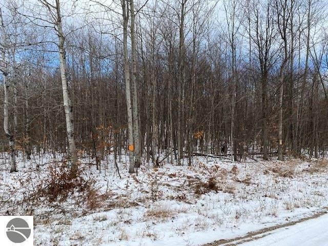 00 Mayfield Trail, Kingsley, MI 49649 (MLS #1882430) :: Team Dakoske   RE/MAX Bayshore