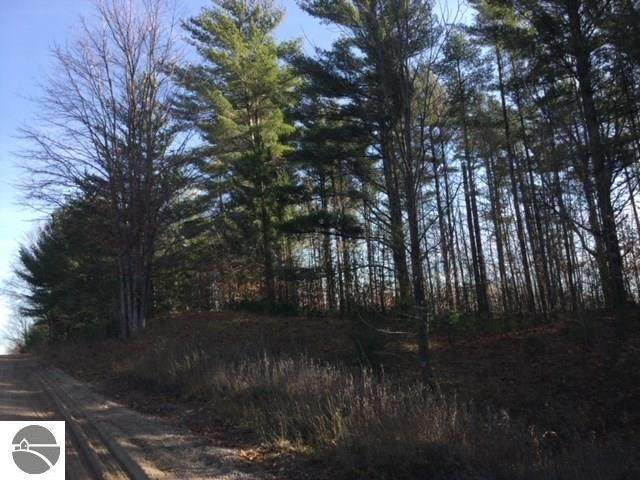 Mitchell Road, Kalkaska, MI 49646 (MLS #1884221) :: Team Dakoske | RE/MAX Bayshore