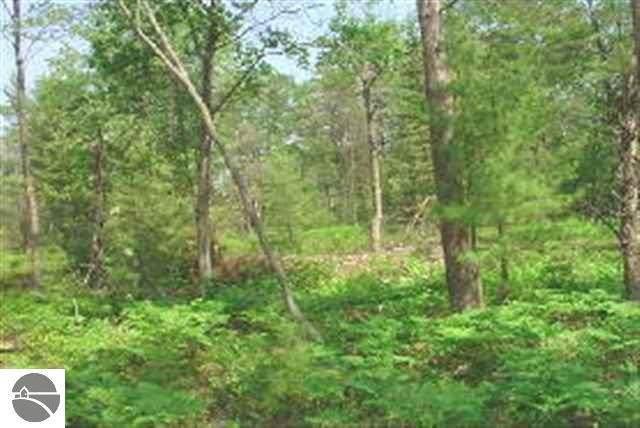 2990 W Cedar Lake Road, Greenbush, MI 48738 (MLS #1885026) :: Brick & Corbett