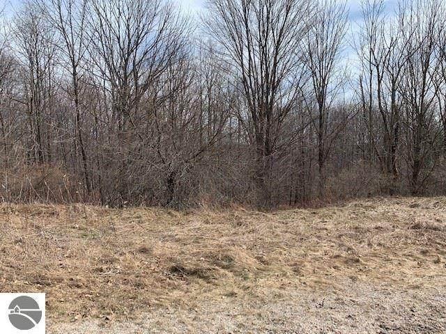E Golfview Drive, Leland, MI 49654 (MLS #1885038) :: Boerma Realty, LLC