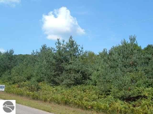John R Rodgers Road, Bellaire, MI 49615 (MLS #1885496) :: Boerma Realty, LLC