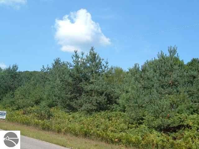 John R Rodgers Road, Bellaire, MI 49615 (MLS #1885498) :: Boerma Realty, LLC