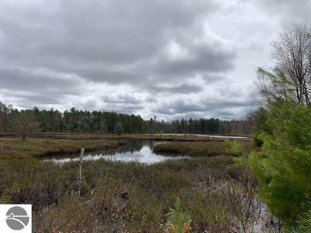 Parcel D Vans Lane, Fife Lake, MI 49633 (MLS #1886573) :: Team Dakoske | RE/MAX Bayshore