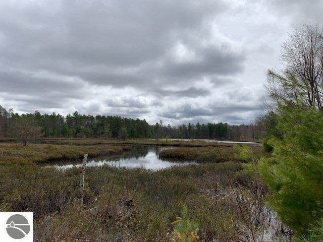 Parcel K Vans Lane, Fife Lake, MI 49633 (MLS #1886581) :: Team Dakoske | RE/MAX Bayshore