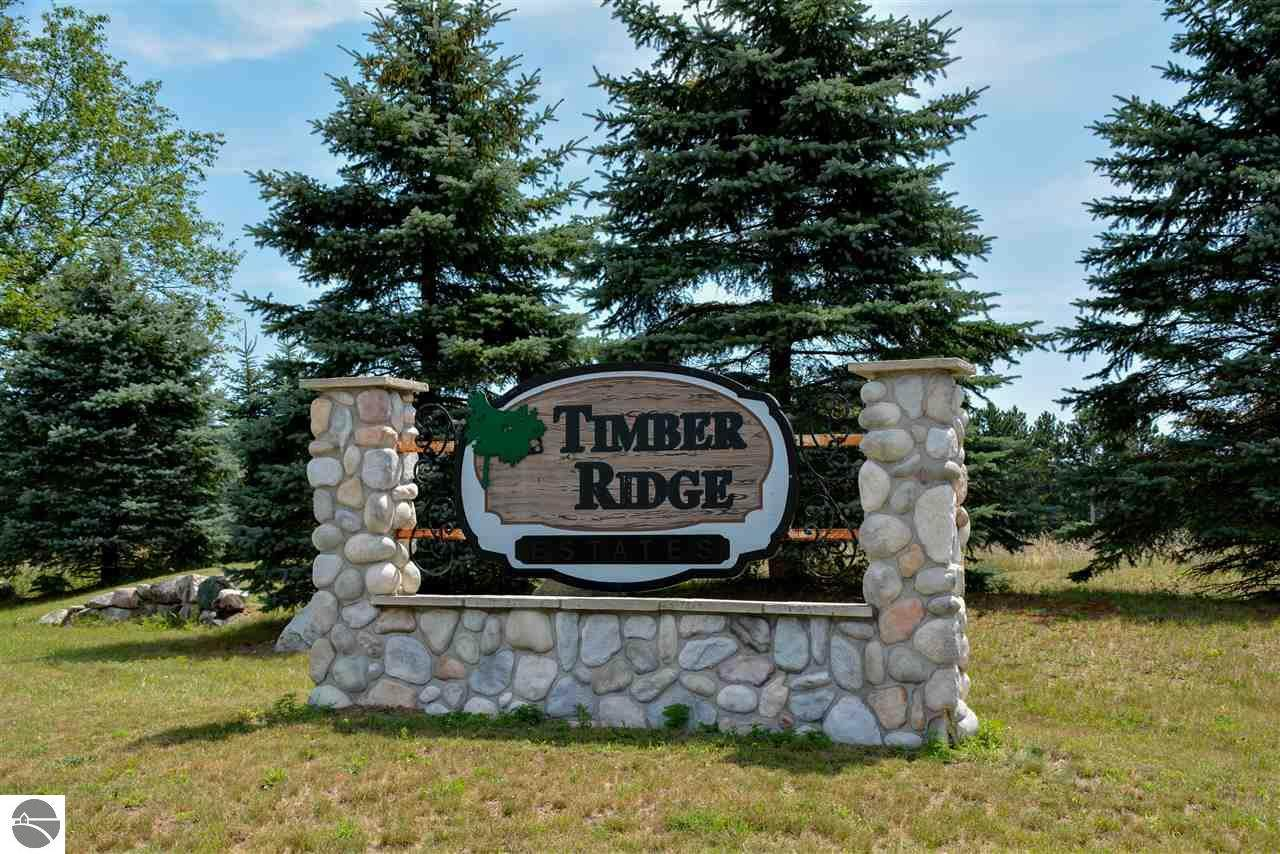 8300 Timber Valley Trail - Photo 1