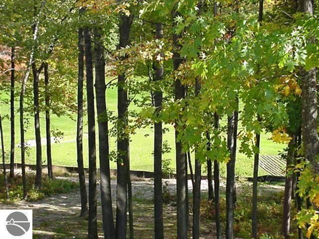 38 Brook Hill Cottages, Glen Arbor, MI 49636 (MLS #1887090) :: Michigan LifeStyle Homes Group