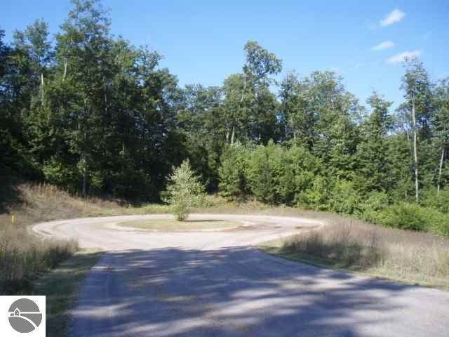 Lot #11 Timber Valley Court, Kewadin, MI 49648 (MLS #1888728) :: Boerma Realty, LLC