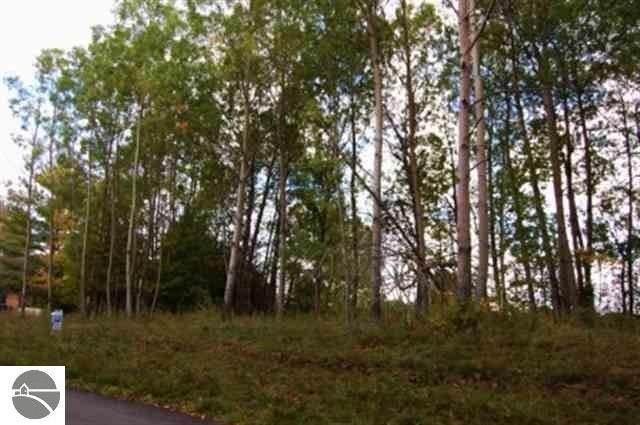 282 Lakeview Trail, Kewadin, MI 49648 (MLS #1888770) :: Team Dakoske | RE/MAX Bayshore