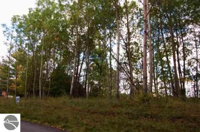 000 Lakeview Trail, Kewadin, MI 49648 (MLS #1888776) :: Team Dakoske | RE/MAX Bayshore