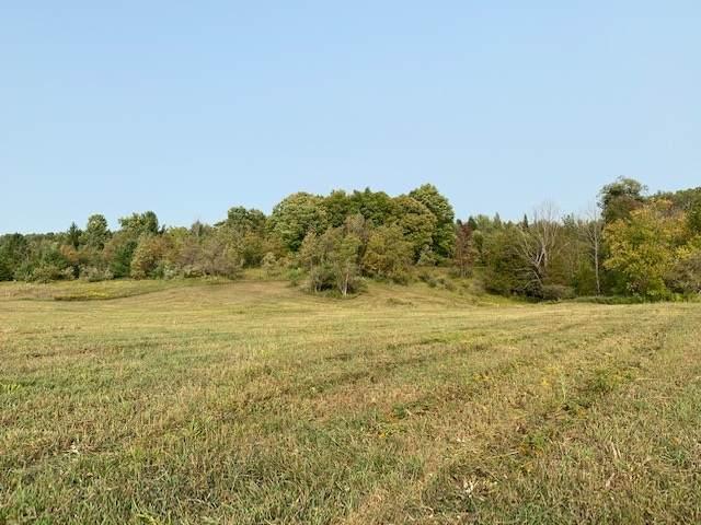 0 Scenic Hills Drive, West Branch, MI 48661 (MLS #1763251) :: Brick & Corbett
