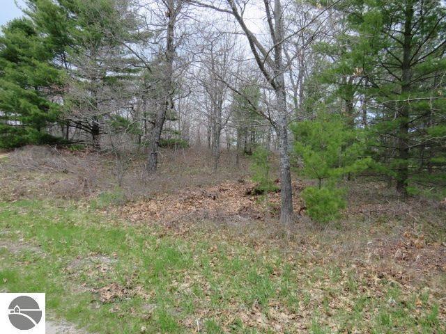 00 Wintergreen, East Tawas, MI 48730 (MLS #1857262) :: Michigan LifeStyle Homes Group