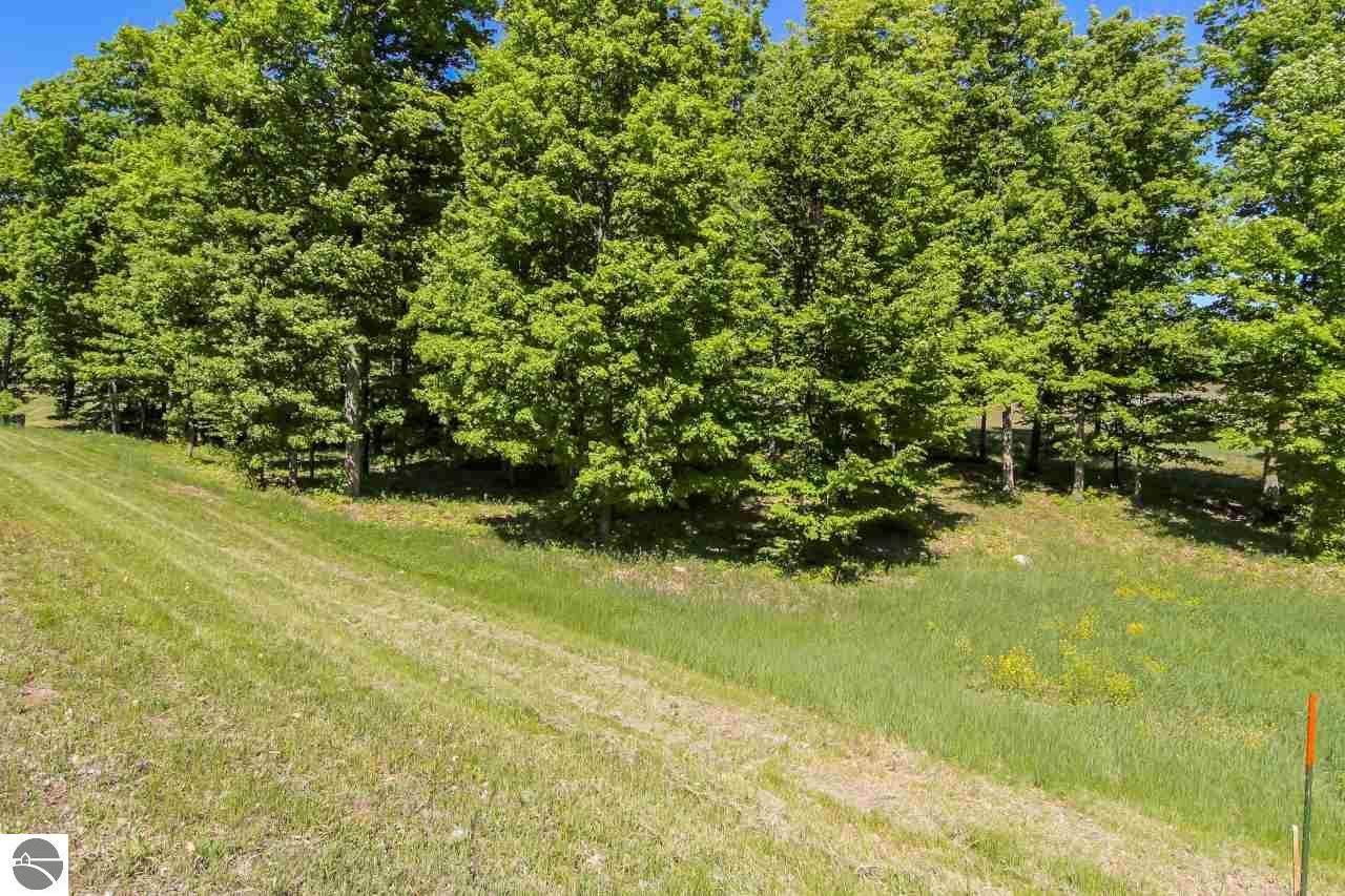 0018 Heather Ridge Trail - Photo 1