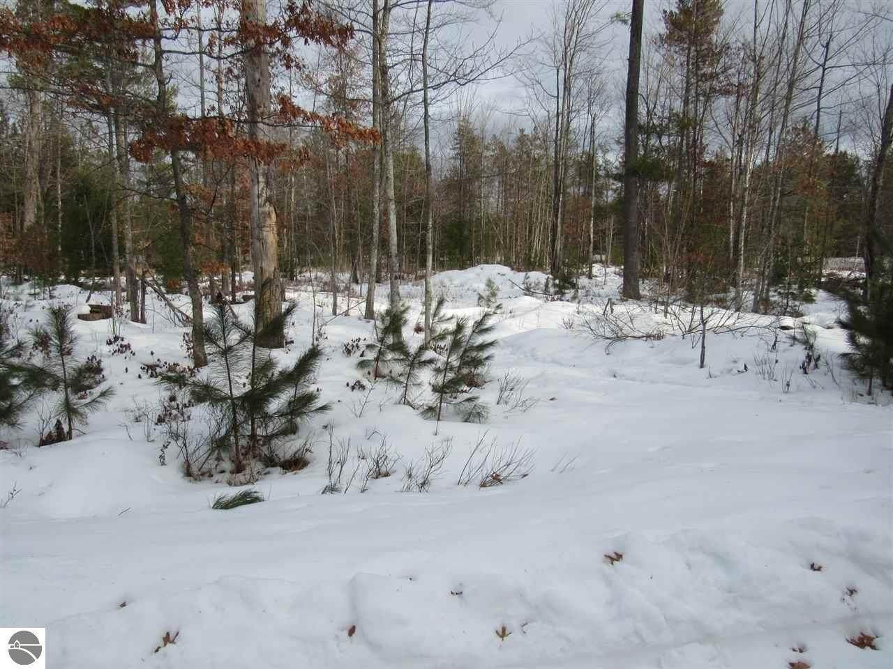 9 Pine Lodge - Photo 1