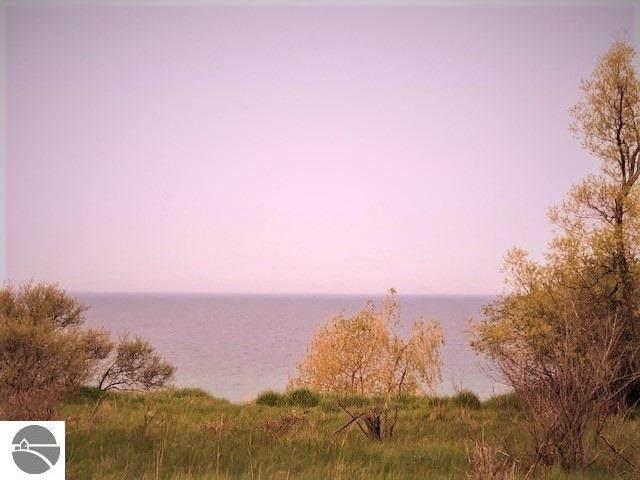 XX Reigle, Manistee, MI 49660 (MLS #1875593) :: CENTURY 21 Northland