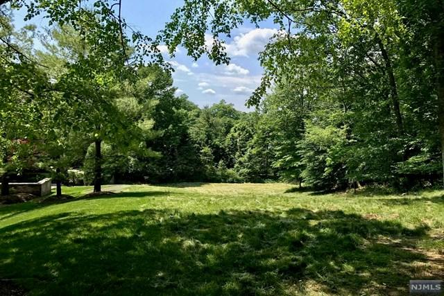132 Hartshorn Dr, Millburn, NJ 07078 (MLS #1723295) :: The Dekanski Home Selling Team