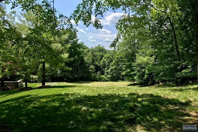 132 Hartshorn Dr, Millburn, NJ 07078 (MLS #1723298) :: The Dekanski Home Selling Team