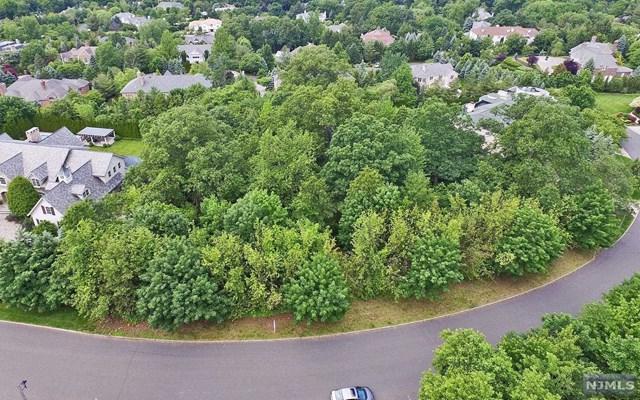 104 Huyler Landing Rd, Cresskill, NJ 07626 (MLS #1723620) :: William Raveis Baer & McIntosh