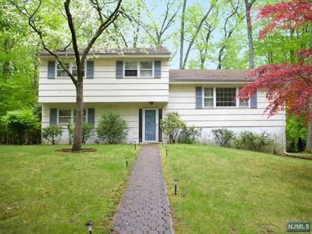 19 Dearborn Dr, Old Tappan, NJ 07675 (MLS #1725397) :: William Raveis Baer & McIntosh
