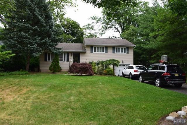 517 Northern Pkwy, Ridgewood, NJ 07450 (#1726145) :: RE/MAX Properties