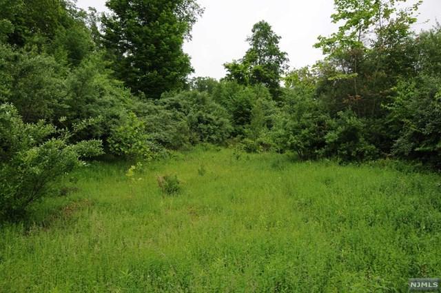 16A Spring Hill Lane, LIBERTY, NJ 07865 (#1733071) :: Berkshire Hathaway HomeServices Abbott Realtors