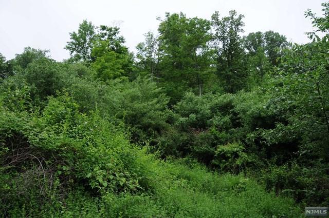 18 Spring Hill Lane, LIBERTY, NJ 07865 (#1733073) :: Berkshire Hathaway HomeServices Abbott Realtors