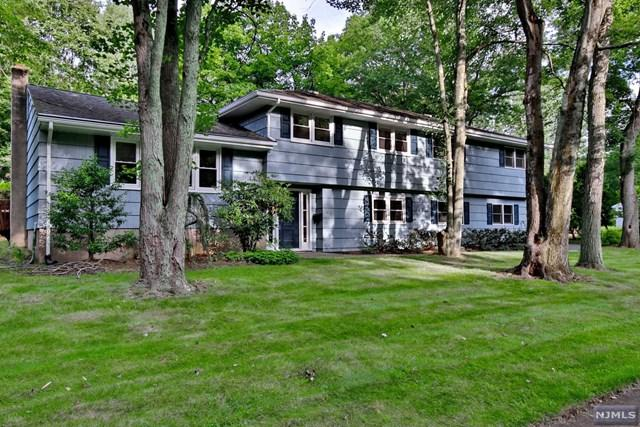 560 Lafayette Rd, Harrington Park, NJ 07640 (MLS #1733721) :: William Raveis Baer & McIntosh
